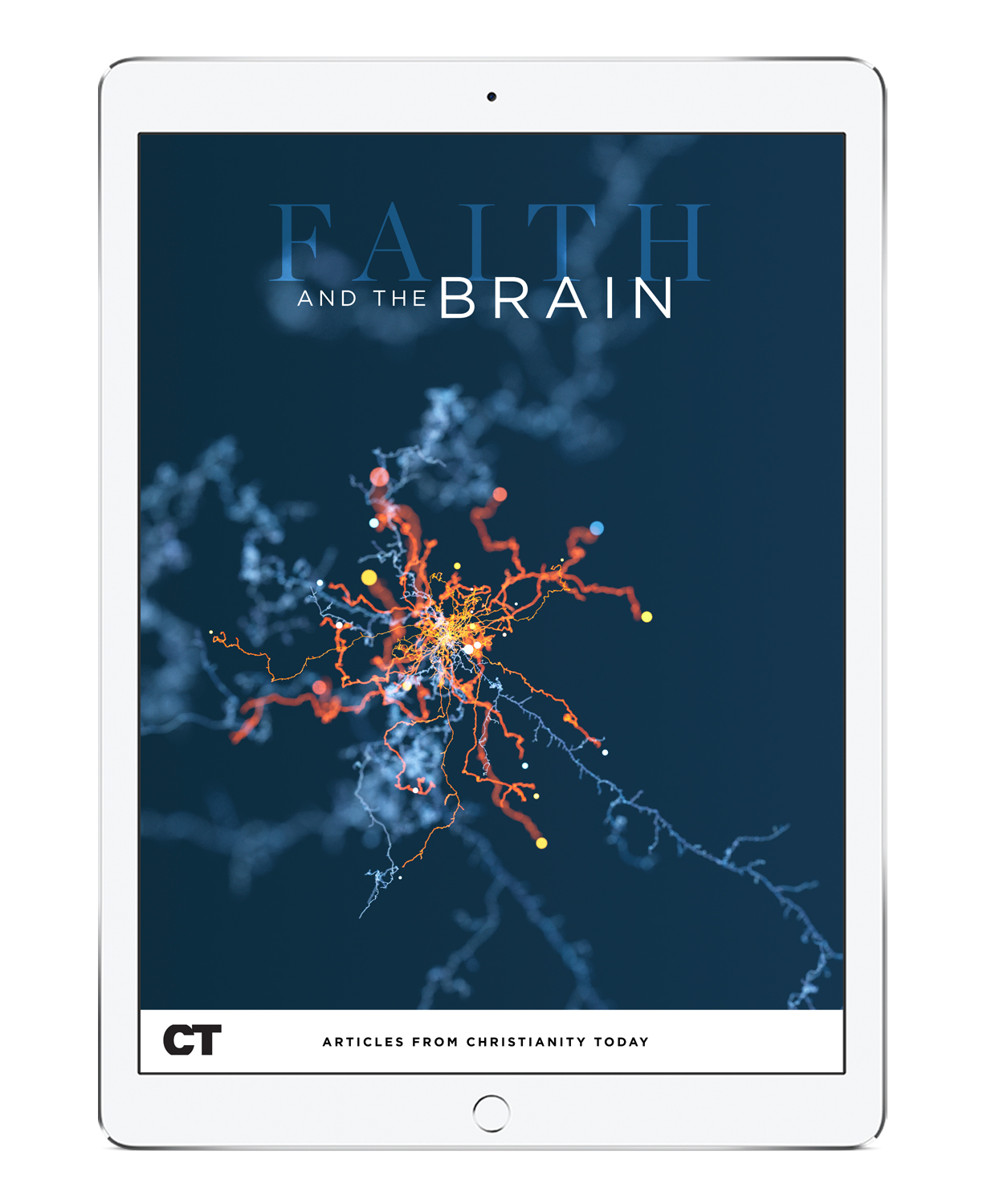 Faith and the Brain